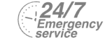24/7 Emergency Service Pest Control in Brentford, Kew Bridge, TW8. Call Now! 020 8166 9746